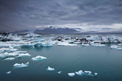 Icebergs de flottement. Photographie stock