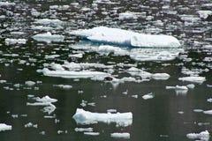 Icebergs de glace chez Tracy Arm Fjord Photographie stock libre de droits