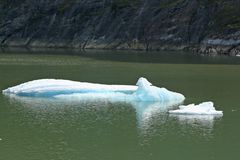 Icebergs de glace chez Tracy Arm Fjord Images stock