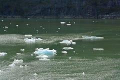 Icebergs de glace chez Tracy Arm Fjord Image libre de droits