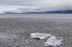 Icebergs de glace sur la plage Photographie stock