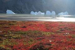 Icebergs de Groenlandia Fotos de archivo libres de regalías