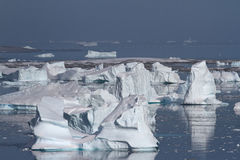 Icebergs del valle o icebergs del cementerio cerca del Peninsu antártico Foto de archivo libre de regalías