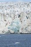 Icebergs devant le glacier, le Svalbard, arctique Photographie stock libre de droits