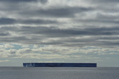 Icebergs en Antarctique Image stock