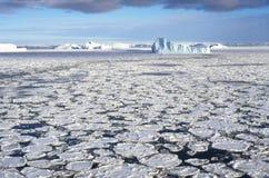 Icebergs en hielo marino Fotos de archivo libres de regalías