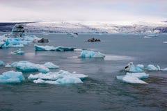 Icebergs en laguna del ³ n del rlà del ¡de Jökulsà Imagenes de archivo