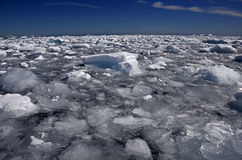 Icebergs et glace impétueuse, Antarctique Photographie stock