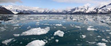 Icebergs et montagnes panoramiques - fjords de Kenai Photographie stock libre de droits