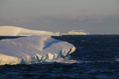 Icebergs in the evening light Royalty Free Stock Photos