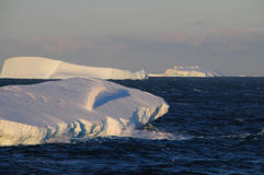 Icebergs in the evening light Stock Photography