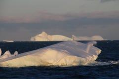 Icebergs in the evening light Stock Photo