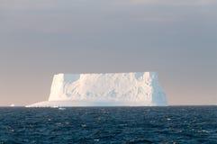 Icebergs in the evening light Stock Image