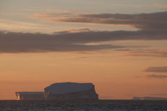 Icebergs in the evening light. Giant tabular icebergs floating in the Weddell Sea, in Antarctica Royalty Free Stock Photography