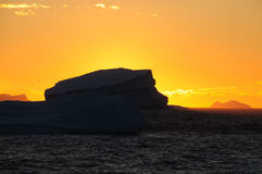 Icebergs in the evening light. Giant tabular icebergs floating in the Weddell Sea, in Antarctica Royalty Free Stock Image