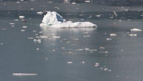 Icebergs Royalty Free Stock Photos