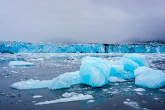 Icebergs floating away from a tidewater glacier Royalty Free Stock Photos