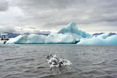 Icebergs floating in the jokulsarlon lagoon Stock Photos