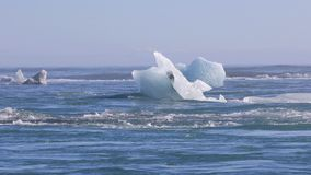 Icebergs floating on the North Atlantic Ocean stock video