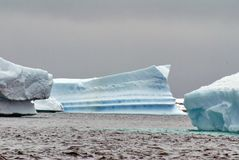 Icebergs in the frigid waters of Antarctica. Icebergs grounded in a bay in the frigid waters of Antarctica royalty free stock photo