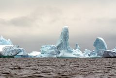 Icebergs in the frigid waters of Antarctica. Icebergs grounded in a bay in the frigid waters of Antarctica stock photography