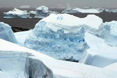 Icebergs in the frigid waters of Antarctica. Icebergs grounded in a bay in the frigid waters of Antarctica stock photo