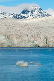 Icebergs in front of the glacier, Svalbard, Arctic Royalty Free Stock Photography