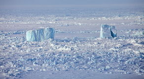 Icebergs in frozen Arctic Ocean Royalty Free Stock Image