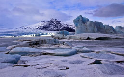 Icebergs frozen in proglacial lake, Fjallsjokull G Royalty Free Stock Image