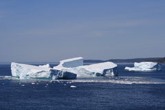 Icebergs in Goose Cove Stock Images