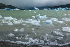 Icebergs in Grey Lake - Patagonia - Chile Royalty Free Stock Image