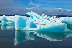 The icebergs and ice floes are reflected in water Royalty Free Stock Photo