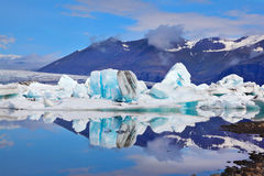 Icebergs and ice floes Stock Photos
