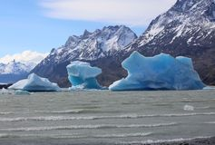 Icebergs in Lake Grey. Torres del Paine National Park. Chile stock photo