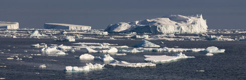 Icebergs - mer de Weddell - l'Antarctique Photo stock