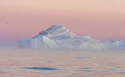 Icebergs in the midnight sun, Ilulissat, Greenland. Huge stranded icebergs at the mouth of the Icejord near Ilulissat at midnight, Greenland Stock Images