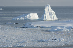 Icebergs near the island. Icebergs near the island of ice fields Royalty Free Stock Photos