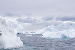 Icebergs in Palmer Archipelago, Antarctica Stock Photography