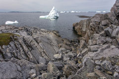 Icebergs por la costa rocosa de Terranova fotos de archivo libres de regalías