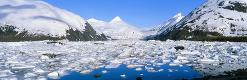 Icebergs in Portage Lake. And Portage Glacier, Alaska royalty free stock image