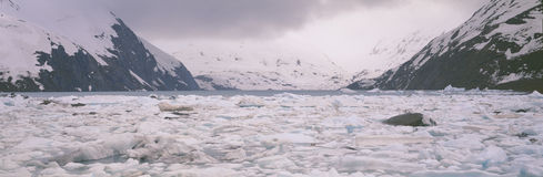 Icebergs in Portage Lake Stock Images
