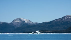 Icebergs in Prince William Sound Stock Images