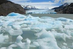 Icebergs que interrumpen de gris del glaciar, Torres del Paine, Chile Foto de archivo
