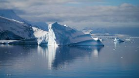 Icebergs reflecting in the calm Paradise Bay in Antarctica.  Stock Photos