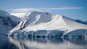 Icebergs reflecting in the calm Paradise Bay in Antarctica.  Royalty Free Stock Photo