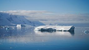 Icebergs reflecting in the calm Paradise Bay in Antarctica.  Stock Images