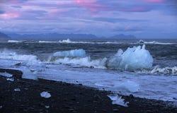 Icebergs on the Seashore Iceland Stock Images