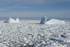 Icebergs in the Southern Ocean - 1. Icebergs in the Antarctic Ocean - 1 Royalty Free Stock Photos
