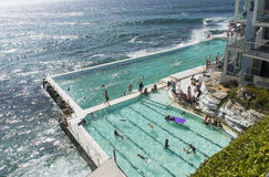 Icebergs Swimming club Royalty Free Stock Images