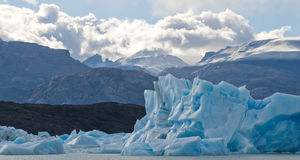Icebergs in the water, the glacier Perito Moreno. Argentina. stock images
